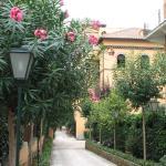 Villa Matissa, Rome