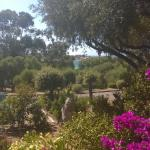 Hotel Pictures: Libecciu Sant Ambroggio, Lumio