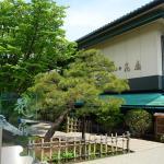 Hidatei Hanaougi, Takayama