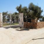 Pajara vista mare 2 posti letto, Torre Suda