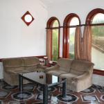 Hotel Pictures: Villa Didi, Velika