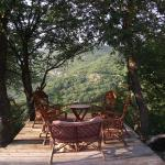 Villa Hrabri Vuk 2, Budva