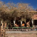 Hotel Pictures: Atacama Home, San Pedro de Atacama