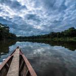 Manu Wildlife Center, Manú