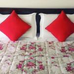My House Hotel, Vung Tau