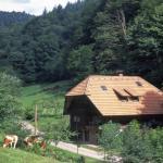 Hotel Pictures: Aldes Hus, Oberwolfach