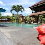 Bali Putra Villa, Ubud