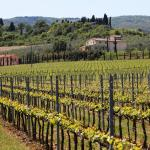 Le Buche Wine Resort&Spa,  Sarteano