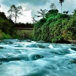 Rivertree Munnar, Munnar