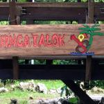 Finca Talok Hostel,  Cahuita
