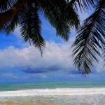 Ocean of Life Ayurvedic Resort,  Bentota