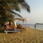 Hotel Coconut Bar Sea Lodge, Beruwala
