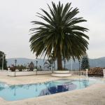 Hotel Pictures: San Agustin Hotel Campestre Las Palmeras, La Estrella