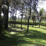 Hotel Pictures: Lira Park Hotel, Sorriso
