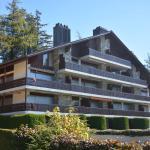 Hotel Pictures: Appartement Robin des Bois A5, Crans-Montana