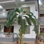 NK Holiday Apartments Benaulim Goa, Benaulim