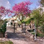 Villa Poggio Ulivo B&B, Rivoli Veronese