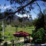 Hotelfoto's: Cherry Blossom Bed & Breakfast, Healesville