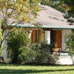Casa Vacanze Selva, Premariacco