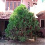 Joy Guest House,  Angunakolapelessa