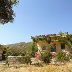 Perivoli House, Mylopotas
