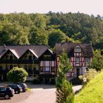 Hotel Pictures: Baunhöller-Mühle, Emmelshausen