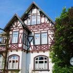 Hotel Pictures: Hotel Villa Rossek, Bad Liebenstein