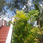 Tobago Tranquil Apt. Guest House,  Buccoo