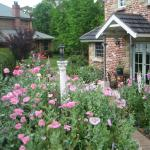Hotelbilleder: Trafalgar B&B and Annie's Cottage, Kurrajong