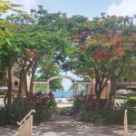 Rincon Beach Resort,  Rincon
