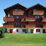 Hotel Pictures: Apt. Nr. 2, Ulrichen