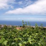 Hotel Pictures: Villa Icod de los Vinos 3662, Icod de los Vinos