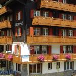 Alpenruh (007102) 2,  Saas-Fee