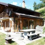 Hotel Pictures: Chalet Ovronnaz 1006, Ovronnaz