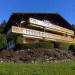 Hotel Pictures: Gemeaux 3, Villars-sur-Ollon