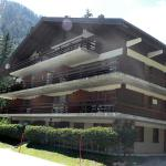 Hotel Pictures: Apartment Champex-Lac 1182, Champex