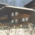 Apartment Elisabeth, Lenk