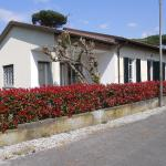 Bresciani, Marina di Pietrasanta