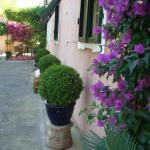 Villa Casa Rosa, Procchio