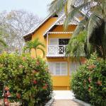 Hotel Pictures: Golden Frog Hostels, Isla Grande