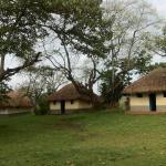 Enfuzi Campsite Lake Nkuruba,  Durama