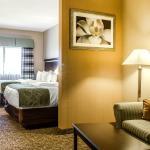 Comfort Suites Bloomsburg,  Bloomsburg