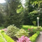 At the Turgenev Villa,  Baden-Baden