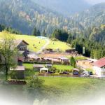 Fotos de l'hotel: Reiterhof Berggut Gaicht, Nesselwängle