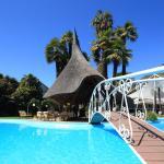 Hotel Pictures: Albergo Losone, Losone