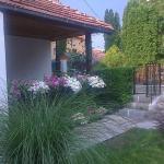 Apartment Veljkovic,  Soko Banja