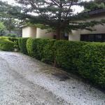 Zebra Guest House, Lusaka