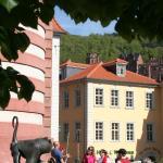 Hotel Pictures: Hotel Zur Alten Brücke, Heidelberg