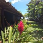 Hotel Pictures: Pousada Das Cores, Cumuruxatiba