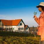 Hotel Pictures: Weinresidenz am Eisenberg, Eisenberg an der Pinka